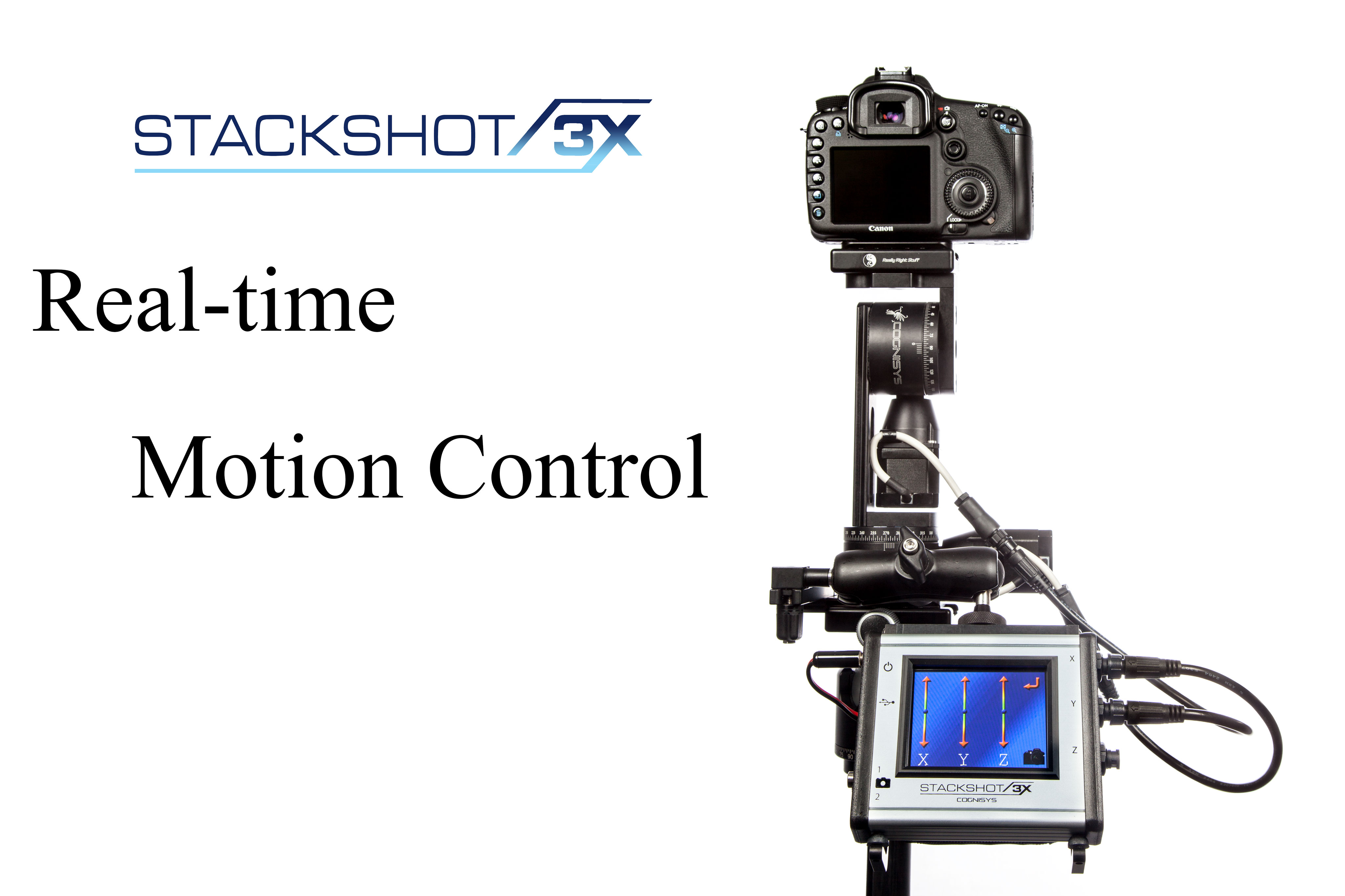 Real-Time Motion Control - Video